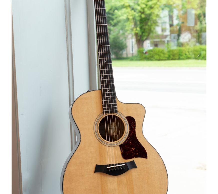 Taylor Acoustic Guitars - 214ce Plus