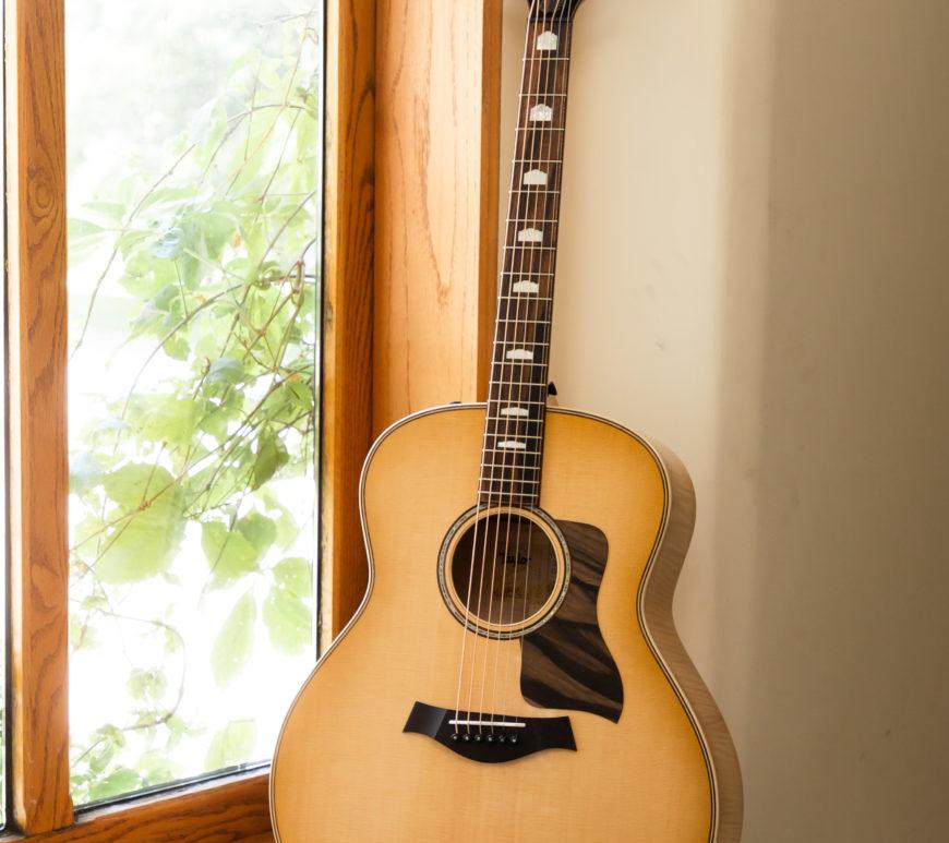 Taylor Guitars 618e